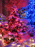 Red and Blue Christmas Stock Image