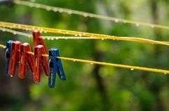 Clothespins on the clothesline. Red and blue clothespins. The number of pins on the cord. After the rain. A drop of water. Freshness. Wet pegs. Autumn day Royalty Free Stock Image