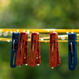 Clothespins on the clothesline. Red and blue clothespins. The number of pins on the cord. After the rain. A drop of water. Freshness. Wet pegs. Autumn day Stock Photography