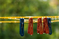 Clothespins on the clothesline. Red and blue clothespins. The number of pins on the cord. After the rain. A drop of water. Freshness. Wet pegs. Autumn day Stock Images