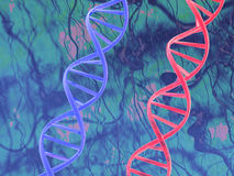 Red & blue dna Royalty Free Stock Images