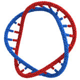 Red and Blue DNA molecule in a circle close-up Stock Photo