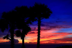 Red-blue dramatic sunsets Royalty Free Stock Photography