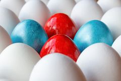 Red and blue easter eggs among white chicken eggs in cardboard tray closeup Royalty Free Stock Photography