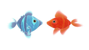 Red and blue fish royalty free illustration