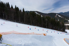Red and blue flags on ski descents during competitions. In winter period Stock Photo