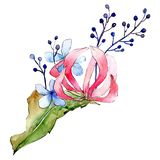 Red and blue flowers. Isolated flower illustration element. Background set. Watercolour drawing aquarelle bouquet. Red and blue flowers. Floral botanical flower stock illustration