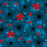 Red and blue flowers Stock Photo