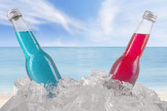 Red and blue fresh drink in the ice cube Royalty Free Stock Photo
