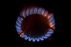 Red and blue gas flames Royalty Free Stock Photography