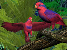Red and Blue Lory Parrots Stock Photography
