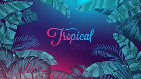 Red blue neon light, trendy background with tropical vector plant and leaf. Design of a poster for interior decoration royalty free illustration
