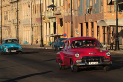 Red and blue old American cars in sunset. HAVANA, CUBA, FEBRUARY 16, 2014 : Classic old American car in the streets of Havana. Classic cars are still in use in Royalty Free Stock Images