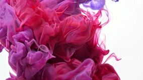 Red and blue paint forming thick, inky pink, blue and purple clouds in clear water against a white background,