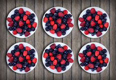 Red and blue raspberries and blueberries in the plates. Dessert. Royalty Free Stock Photos