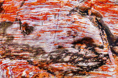 Red Blue Rock Ceiling Abstract Royal Tomb Petra Jordan Stock Image