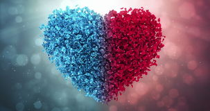 Red Blue Rose Flower Petals In Love Heart Valentine Wedding Background Loop 4k. Animation of romantic flying red blue rose flower petals in shape of lovely heart stock footage