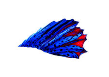 Red and blue Siamese fighting fish - Betta Splendens Royalty Free Stock Images