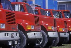 Red and blue trucks in a row Stock Images