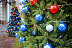 Red, blue and white decorating balls on the christmas trees Royalty Free Stock Photography