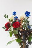 Red, Blue and White Roses in Vase Royalty Free Stock Photography