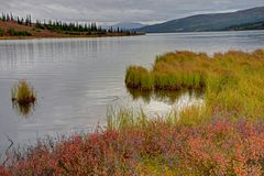 Free Red Blueberry Bushes Surround A Clear Blue Lake In Alaska. Royalty Free Stock Images - 141133039