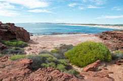 Red Bluff Beach. Red sandstone and flora line the rugged Red Bluff beach with turquoise Indian Ocean waters under a blue sky on the coral coast in Kalbarri Royalty Free Stock Image
