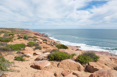 Red Bluff in Kalbarri. Landscape at Red Bluff with scenic views of the turquoise Indian Ocean seascape, red sandstone rock, and native plants under an overcast Royalty Free Stock Photography