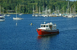 Red Boat. Cruising through the harbor at Bainbridge Island, WA royalty free stock image