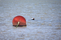 Red boat buoys. In the sea Royalty Free Stock Photo