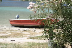 Red boat on lake shore and wild goose in shadow of. Red boat on lake with turquoise and dark blue colors  shore with white sand and wild goose in shadow of green Stock Images