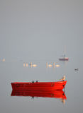 Red boat on the quit  fjord. Seagull on a red small boat on very quiet water on the fjord early morning Stock Photography