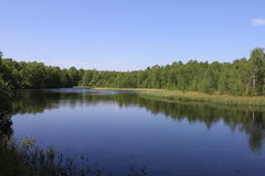 Red bog lake Stock Photography