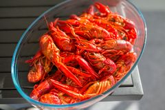 Red boiled crawfish in clear glass bowl Royalty Free Stock Photography