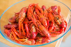 Red boiled crawfish in clear glass bowl Stock Photos