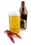 Red boiled crayfish with beer glass and beer bottle, isolated Stock Photography