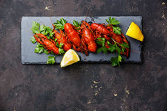 Red boiled crayfish with lemon Stock Image