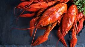 Red boiled crayfish on stone slate. Crawfish closeup Stock Photography
