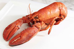 Red boiled lobster Stock Photo