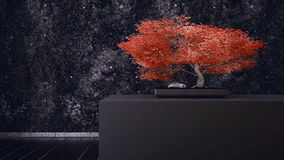 Red Bonsai Royalty Free Stock Photo