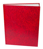 Red book standing isolated Royalty Free Stock Photography