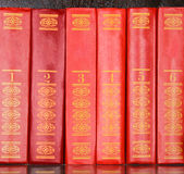 Red books standing in a row Royalty Free Stock Image