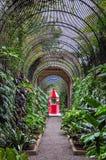 Red booth in botanical garden in Puerto de la Cruz Stock Photos