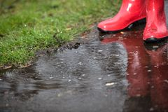 Red boots in a puddle with water drops Royalty Free Stock Images