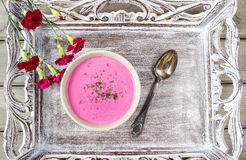 Red borsch, beetroot soup and fresh vegetables Royalty Free Stock Photo