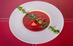 Red borsch with greens. Ukrainian national dish royalty free stock photo