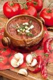 Red borscht  in ceramic  bowl Stock Image