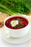 Red borscht with dill Royalty Free Stock Photos