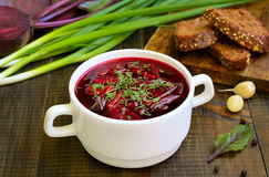 Red borscht soup with dill in white bowl royalty free stock photos