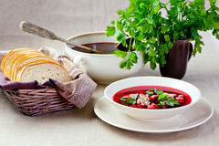 Red borscht soup Royalty Free Stock Photography